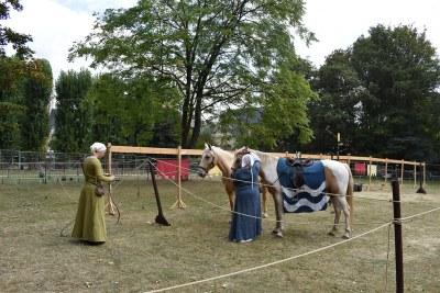 Fetes medievales 2019 (26)