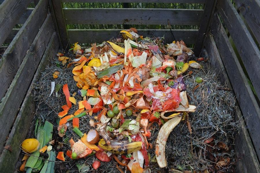 green waste 513609 1920réduit